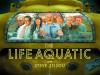 13-the-life-aquatic